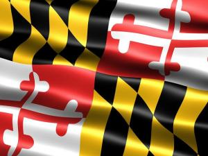 MD%20Flag%20Small