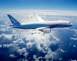 787-8 In-flight Artwork