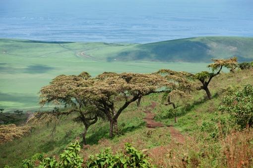 crater-view-toward-serengeti