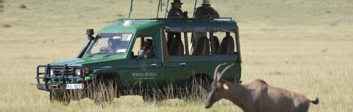 game_drive_experienc