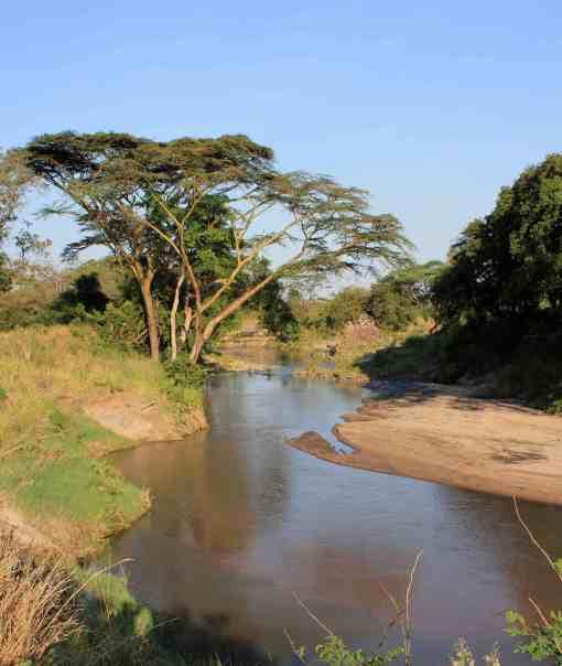 Grumeti-River-before