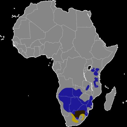 Connochaetes_map