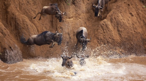 greatmigration01