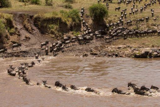 serengeti-north-35