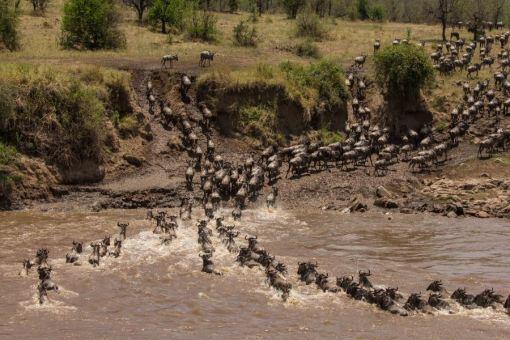 serengeti-north-36