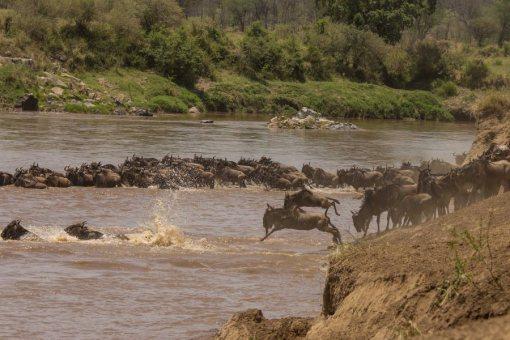 serengeti-north-38
