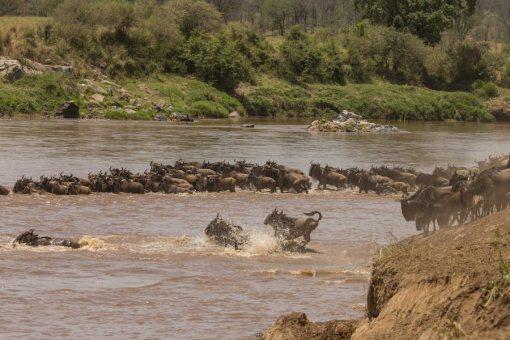 serengeti-north-40
