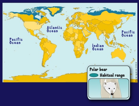 the characteristics of the polar bears and their habitats in the northern regions of the world Polar bears are the largest land carnivores in the world, rivaled only by the many adaptations make polar bears uniquely suited to life in icy habitats in the arctic region, where they spend much of their time on the ice hunting  the american black bear is the smallest of the three bears species found in north america,.