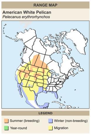 map - pelican