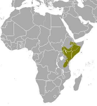 Tragelaphus_imberbis_map