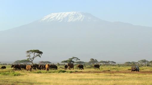 kilimanjaro-safari-313467