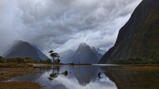 Magnificent Piopiotahi Fjord In New Zeal HD Desktop Background