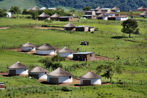 Zulu_houses_made_of_clay_and_covered_with_grass_in_the_village