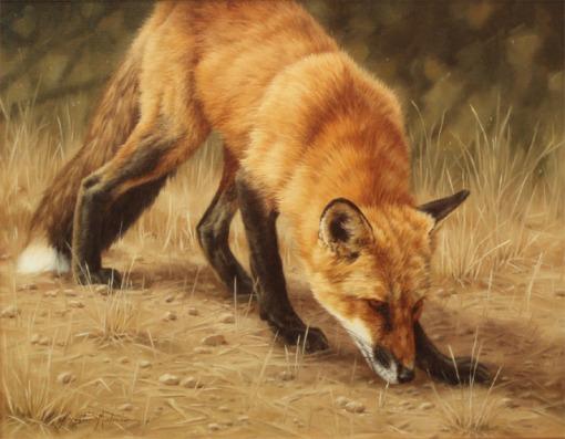 ssg_red_fox
