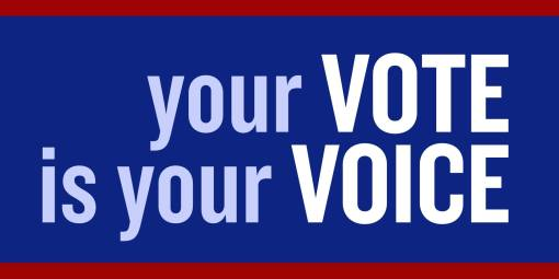 Your-Vote-Is-Your-Voice