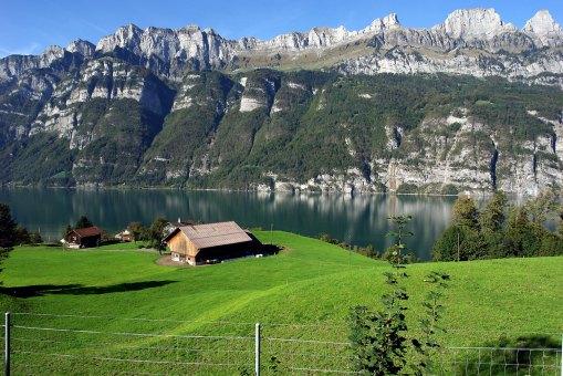 Alps5