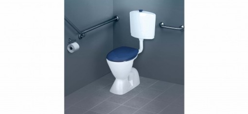 caroma-cosmo-care-toilet-suite-blue-seat-flush-buttons-617x285