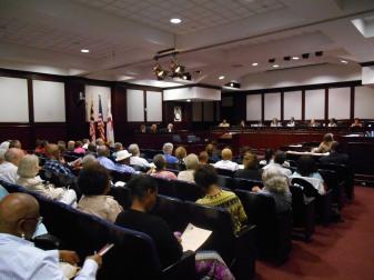 Council_Hearing_1